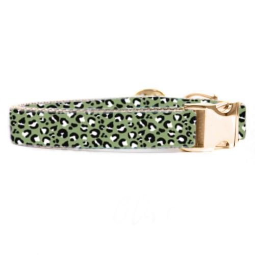Olive Leopard Collar